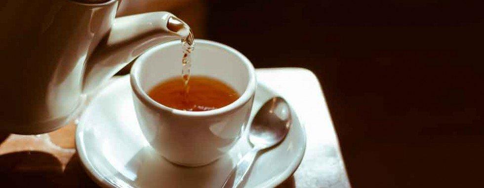 Você sabia que os chás, além de ótimos para espantar o frio, são grandes aliados para o nosso organismo?